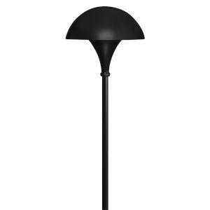 Black One-Light Path Light
