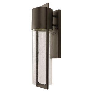 Shelter Buckeye Bronze Medium One-Light Fluorescent Outdoor Wall Light