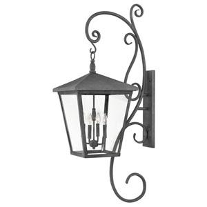 Trellis Aged Zinc 16-Inch Four-Light Outdoor Extra Large LED LED Wall Mount