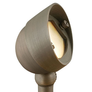 Hardy Island Matte Bronze LED Flood Beam Landscape Spotlight