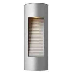 Luna Titanium Medium Flush Dark Sky Outdoor Wall Light