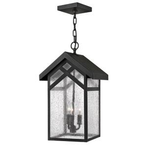 Holbrook Black 19-Inch Three-Light Outdoor Hanging Pendant