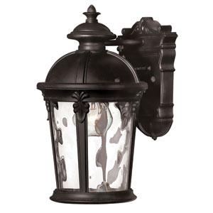 Windsor Black 12.5-Inch LED One-Light Outdoor Wall Light