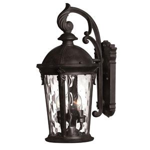 Windsor Black 21-Inch LED One-Light Outdoor Wall Light