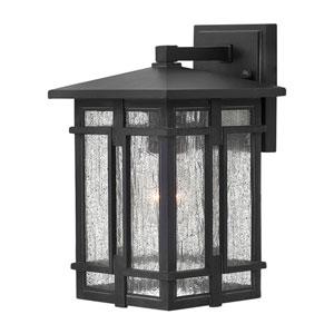 Tucker Museum Black 7-Inch One-Light Outdoor Wall Lantern