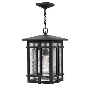 Tucker Museum Black One-Light LED Outdoor Pendant