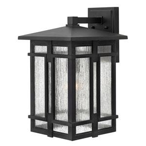 Tucker Museum Black 11-Inch One-Light LED Outdoor Wall Lantern