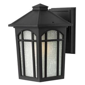 Cedar Hill Black Small Wall LED Outdoor Light Fixture