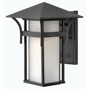 Harbor Satin Black 13.5-Inch One-Light Outdoor Wall Light