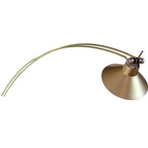 Advent Satin Brass One-Light LED Picture Light