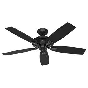 Rainsford Matte Black 52-Inch Adjustable Ceiling Fan