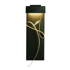 Rhapsody Black LED Wall Sconce with Burnished Steel Accent