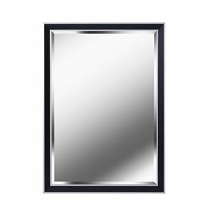 Beau Black with Polished Silver 42-Inch Wall Mirror