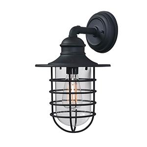 Eli Sandy Black One-Light Large Lantern