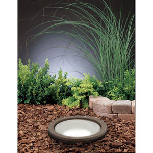 Architectural Bronze Line Voltage One-Light Landscape Well Light