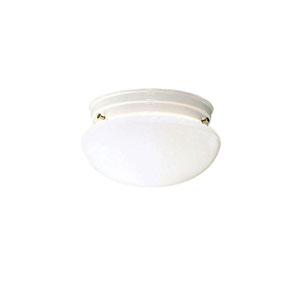 White Flush Mount Ceiling Light