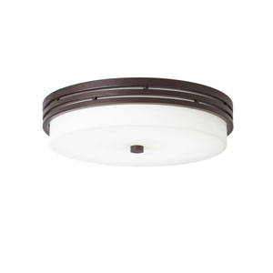 Ceiling Space Olde Bronze LED Flush Mount Light
