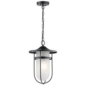 Finn Black 11-Inch One-Light Outdoor Hanging Pendant