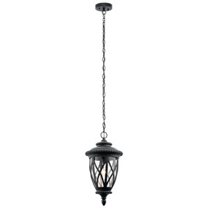 Admirals Cove Textured Black 10-Inch One-Light Outdoor Hanging Pendant