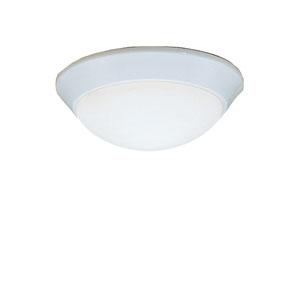 White Flush Mount Ceiling Light