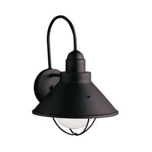 Seaside Black Dark Sky Outdoor Wall Light