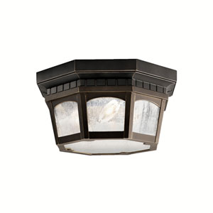 Courtyard Outdoor Ceiling Light