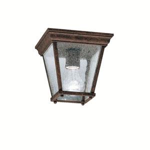 Kirkwood Tannery Bronze Outdoor Flush-Mount Ceiling Light