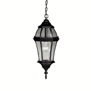 Townhouse Black Outdoor Hanging Pendant