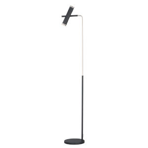 Ambit Black and Satin Nickel Two-Light LED Floor Lamp