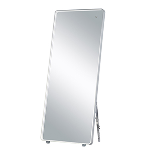 Mirror Brushed Aluminum 28-Inch One-Light ADA LED Free Standing Mirror