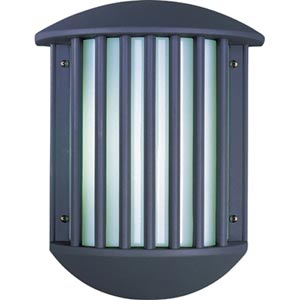 Zenith II Dark Grey Two-Light Fluorescent Outdoor Wall Mount with White Acrylic