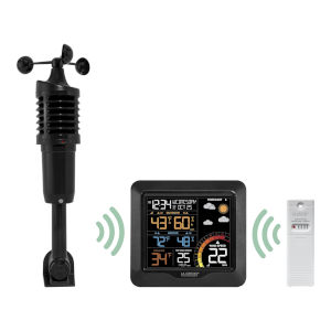 Black Professional Wind Speed Weather Station