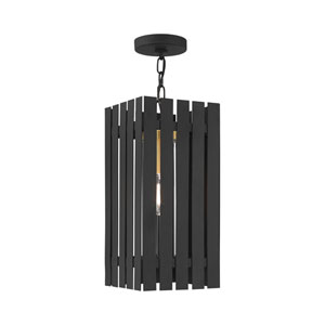 Greenwich Black and Satin Brass One-Light Outdoor Pendant Lantern