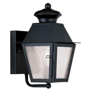 Mansfield Black Outdoor Wall Lantern