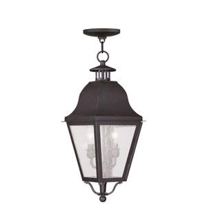 Amwell Bronze Two-Light Outdoor Pendant