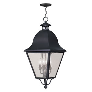 Amwell Black Four-Light Outdoor Pendant