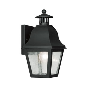 Amwell Black One-Light Outdoor Fixture