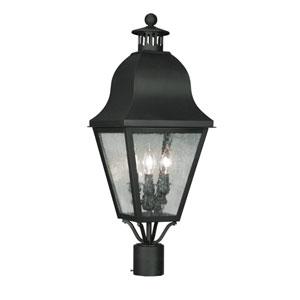 Amwell Black Three-Light Outdoor Fixture