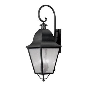 Amwell Black Outdoor Wall Lantern