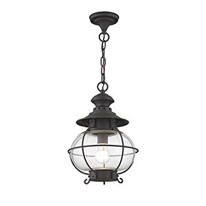 Harbor Bronze Outdoor Hanging Lantern
