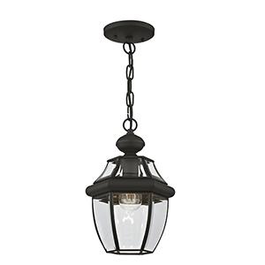 Monterey Black One-Light Outdoor Pendant