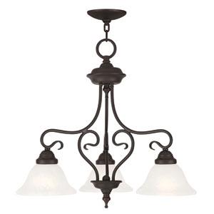 Coronado Bronze 24-Inch Three-Light Convertible Chandelier
