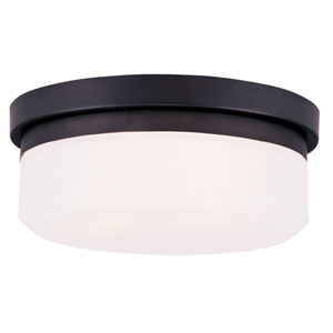 Bronze Two-Light Ceiling Mount