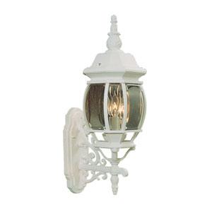 Frontenac White Outdoor Lantern