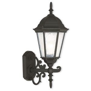 Hamilton Textured Black 8-Inch One-Light Outdoor Wall Lantern