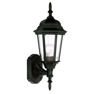 Hamilton Black One-Light Outdoor Wall Light
