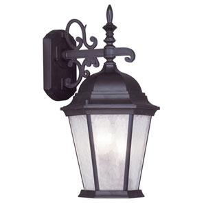 Hamilton Bronze Three-Light 18.5-Inch Outdoor Wall Lantern