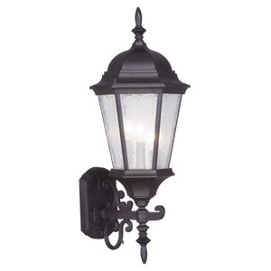 Hamilton Bronze Three-Light 23.5-Inch Outdoor Wall Lantern