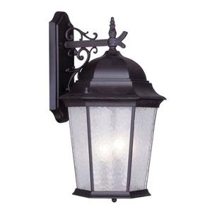 Hamilton Bronze Three-Light 23.25-Inch Outdoor Wall Lantern