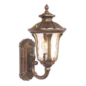 Oxford Gold One-Light Outdoor Wall Mount